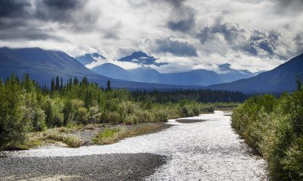 Yukon Territory Zoom Room